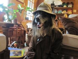 Indiana Wrangler