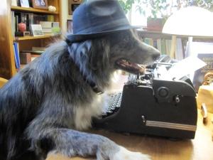 Wrangler at HSU office typewriter