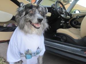 Wrangler road trip